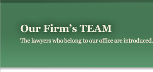 Our Firm's TEAM